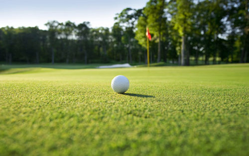 20150216_golf